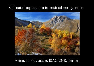 Climate impacts on terrestrial ecosystems