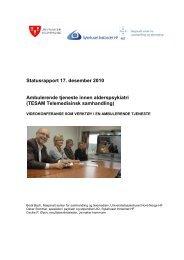 Statusrapport 17. desember 2010 Ambulerende ... - Helsedialog