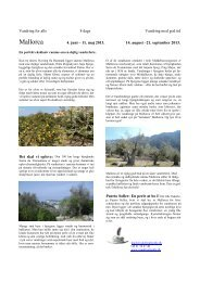 Mallorca - Vandring For Alle