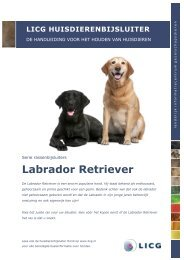 Download de huisdierenbijsluiter Labrador Retriever - Licg