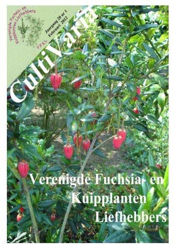 CultiVaria nummer 1 / 2012 - Verenigde Fuchsia en Kuipplanten ...