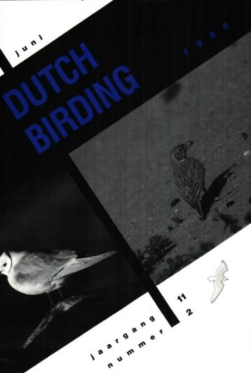 DB 1989 2 - Dutch Birding