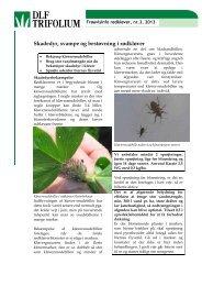 Skadedyr og svampe i rødkløver - DLF-TRIFOLIUM Denmark