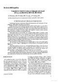 J2P and P2J Ver 1 - sisman - Page 7