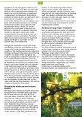 boekje - Wijngaard Wageningse Berg - Page 4