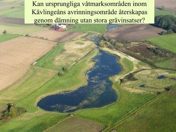Knappt 11 000 ha av den tidigare våtmarksarealen är ... - agwaplan