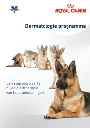 Download productbrochure Dermatologie programma