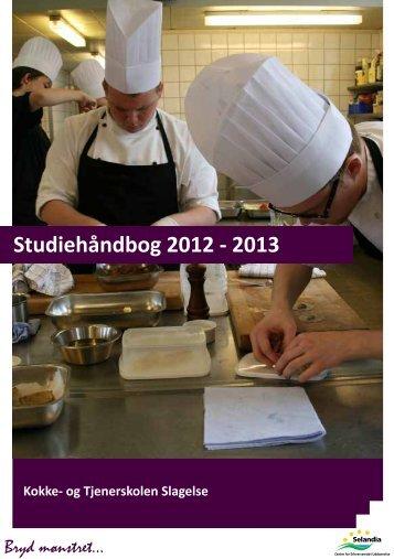 Studiehåndbog 2012 - 2013 - Selandia CEU