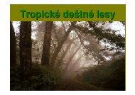 Tropicky les