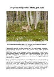 Zoogdieren kijken in Finland, juni 2012 - natuurvereniging MARK ...