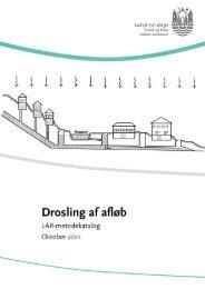 Drosling af vandløb (åbner nyt vindue) (pdf 806 KB) - Aarhus.dk
