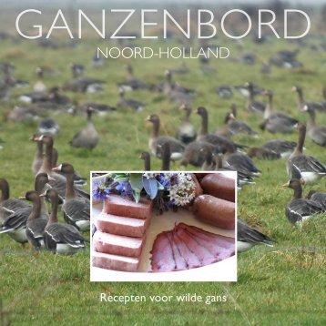 Ganzenbord Noord-Holland - Clm