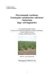 Fenotypisk variation hos vallväxter i historiska ängs - POM
