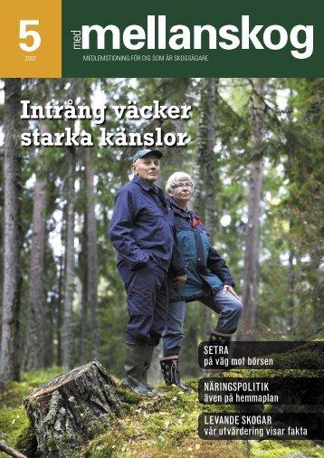 Ladda ner - Mellanskogs logotyp. Tillbaka till startsidan.