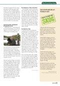 Ladda ner - Mellanskogs logotyp. Tillbaka till startsidan. - Page 5