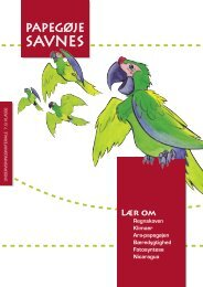 papegøje savnes - Verdens Skove