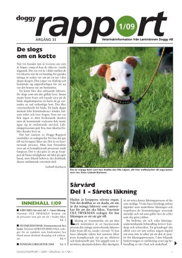 Doggy-Rapport nr 1-09.qxd