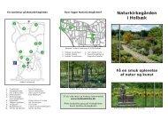 Naturkirkegården i Holbæk - Skt. Nikolai Kirke, Holbæk