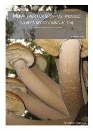 Mekanismer for brun- og hvidmuld svampes nedbrydning af tr - Nature