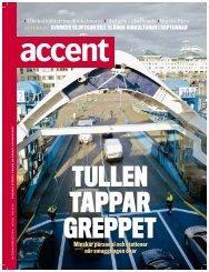 Accent 5/08 (PDF)