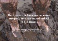 Diefdijk-Noord_dynamisch leven met het water - Leven langs de linie