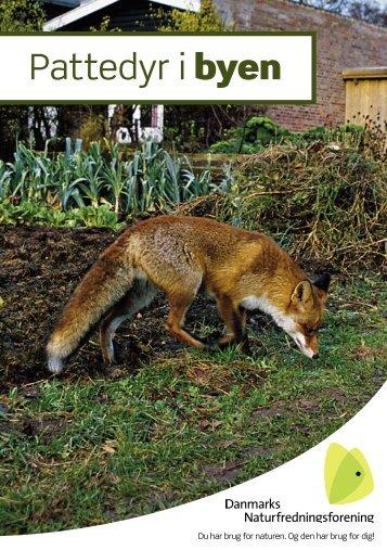 Pattedyr i byen - Danmarks Naturfredningsforening