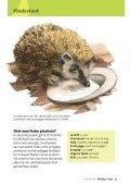 Pattedyr i byen - Danmarks Naturfredningsforening - Page 5