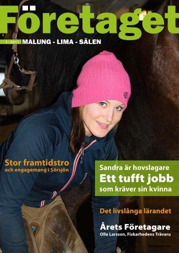 Företaget nr 1, år 2011 - Malung-Sälens kommun
