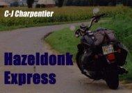 Hazeldonk Express - triptyk från västlig utkant - Läs en bok