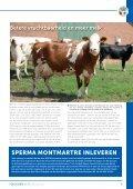 Nieuwsbrief maart 2012 - Fleckvieh - Page 7