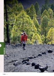 Artikel: Wandelen & mountainbiken La Palma - Op Pad