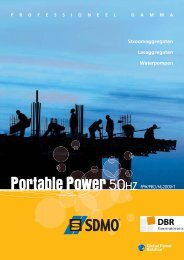 Portable Power 50HZ PPW/PRO/NL-2009/1 - SDMO