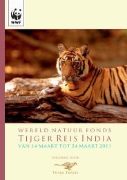 Tijger Reis India - Thika Travel
