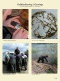 Juli / August 2010 - Lystfiskeriforeningen - Page 7