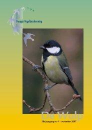 November 2007 - Haagse Vogelbescherming