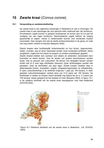 beheerplan kraai - Faunabeheereenheid Nederland