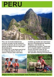 PERU m Politiken - Politiken Plus