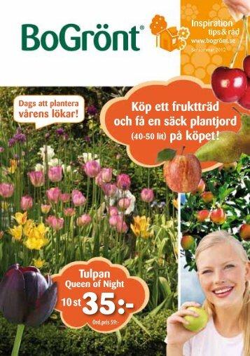 Köp ett fruktträd och få en säck plantjord