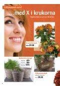 Köp ett fruktträd och få en säck plantjord - Page 4