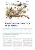Aandacht voor kadavers in de natuur - Dood Doet Leven - Page 2