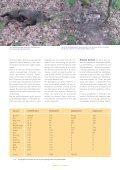 Aandacht voor kadavers in de natuur - Dood Doet Leven - Page 3