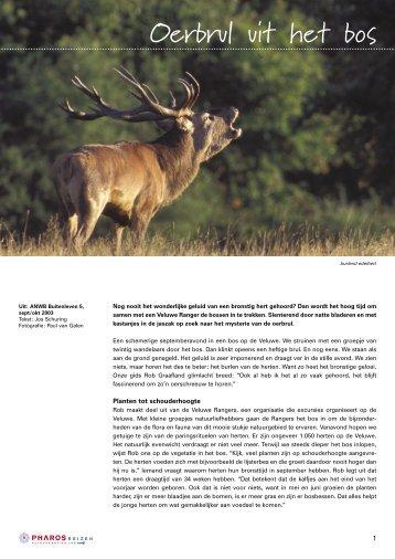 Een van de verhalen is hier te lezen (PDF) - Jos Schuring