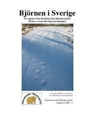 Björnen i Sverige En rapport från Skandinaviska ... - NINA