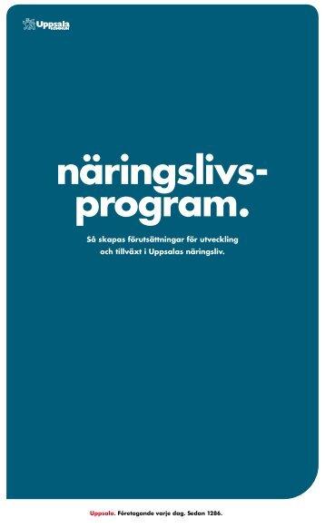 Näringslivsprogram. Så skapas förutsättningar för utveckling och ...