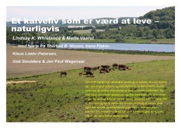 Det er et vigtigt mål i økologisk landbrug at opfylde dyrenes behov ...