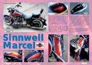 Artiest in de kijker! - Sinnwell Design
