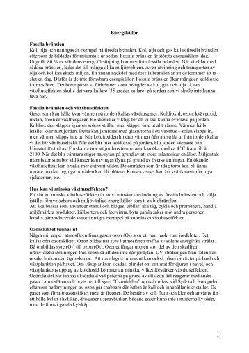 fördelar och nackdelar - Wordpress Wordpress