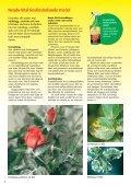 Naturenlig trädgårdsskötsel - Esbau - Page 4