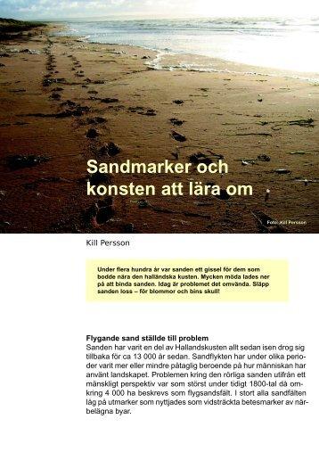 Ny syn på sandmarker