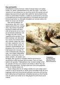 Ny syn på sandmarker - Page 2